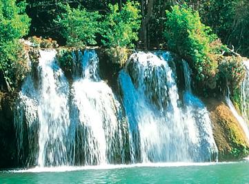 Roteiro Turístico no Pantanal – Destinos Nacionais CVC