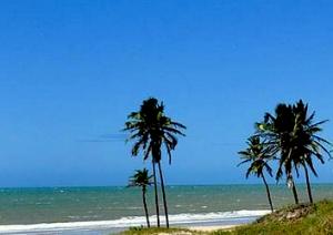 Viagens em promoção para a Praia do Forte
