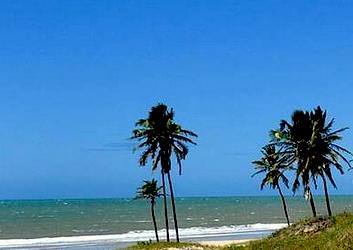 Roteiro em Natal com visita à Praia de Camurumpim