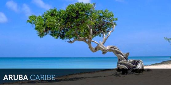 Férias de Janeiro em Aruba – Promoção para o Caribe