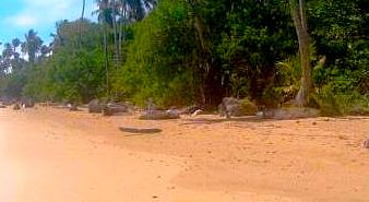 Melhores praias de Morro de São Paulo