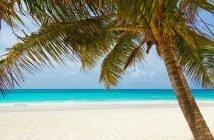 Pacotes promocionais em Punta Cana