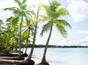 Pacotes em Punta Cana: Hospedagem nos Hotéis Meliá